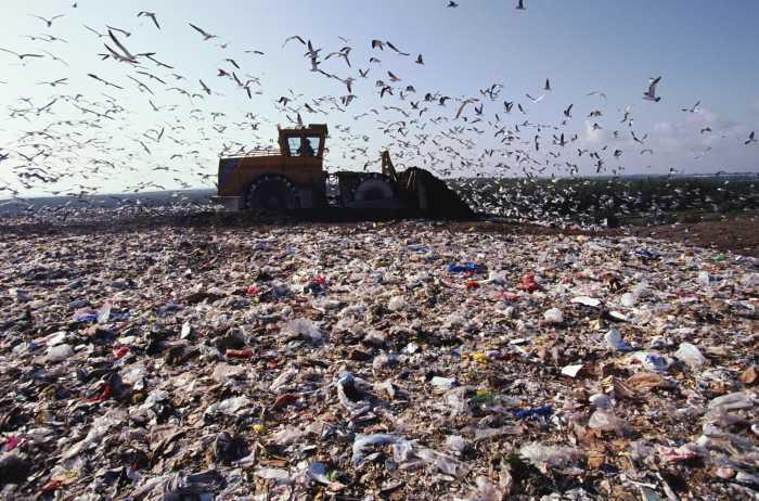Экология и пластмасса